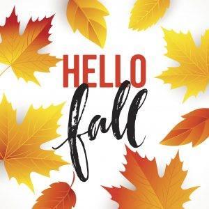 Happy Fall! 🍂🍁😺